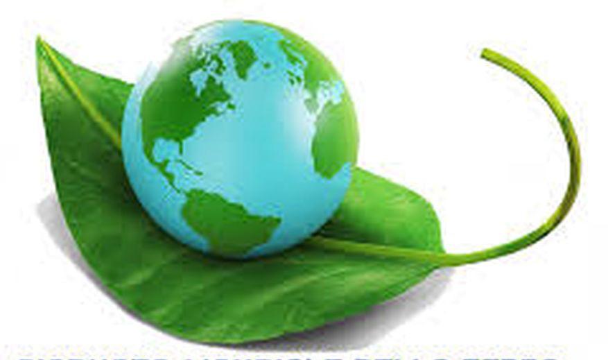 Cooperare Per Un Destino 'green' Della Terra: Se Ne Parla In Ateneo