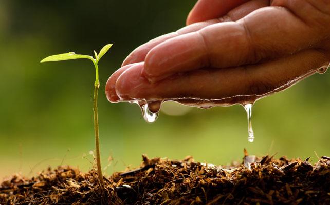 Agricoltura Shutterstock 225149986