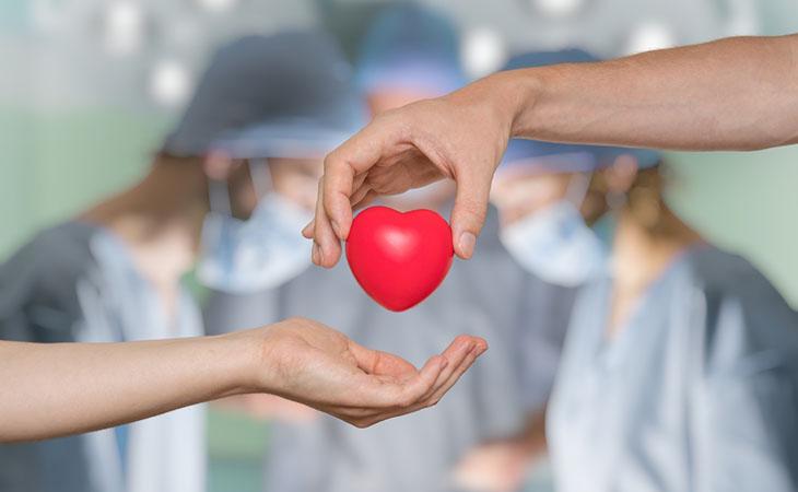 La Solidarietà Tra I Templi: Arrivano Gli Sportelli Per Donare Un Organo
